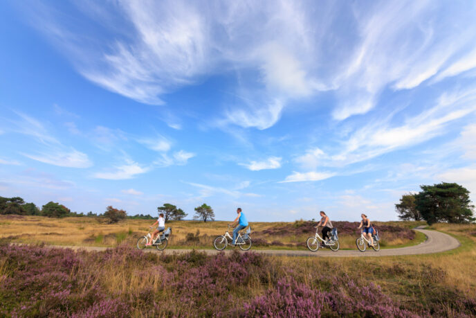 Private bike tour hoge veluwe