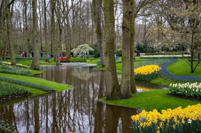 Private Keukenhof gardens tour