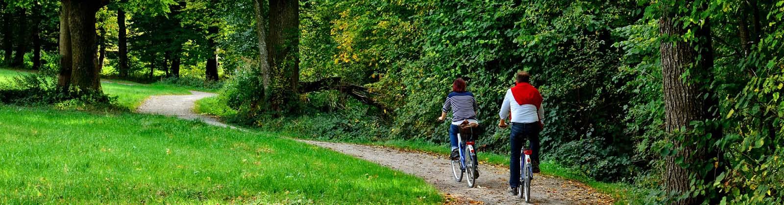 ecotours-amsterdam